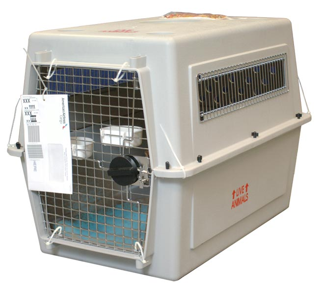 Kennel image